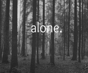 alone, bb, and no image