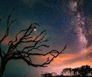belleza, estrellas, and naturaleza image