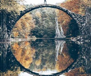 bridge, nature, and photography image