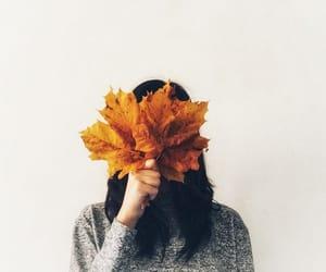 article, orange, and warm image