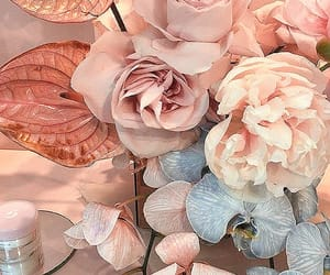 flowers, aesthetic, and glossy image