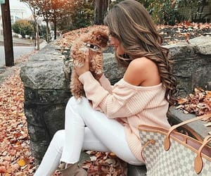fashion, dog, and autumn image