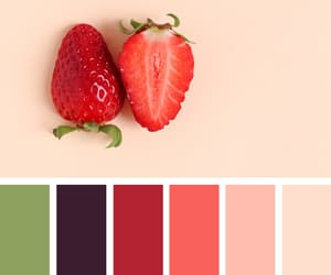 color, cranberry, and fashion image