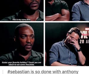 anthony mackie and seb stan image