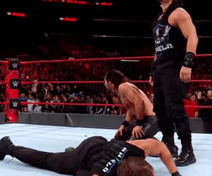 gif, the shield, and dean ambrose image