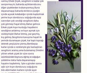 çiçek, kitap, and edebiyat image