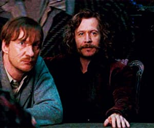 david thewlis, harry potter, and sirius black image