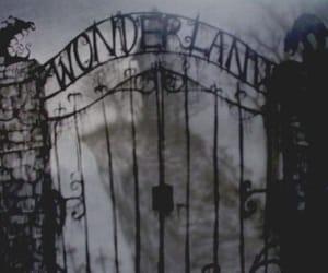 alice in wonderland, asylum, and fantasy image
