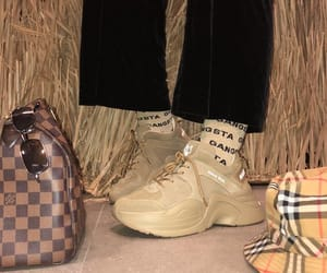 Burberry, fashion, and Louis Vuitton image