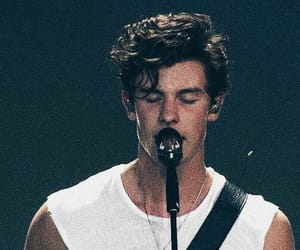 boys, guys, and shawn mendes image