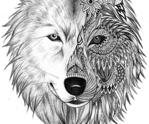 art, white, and wolf image