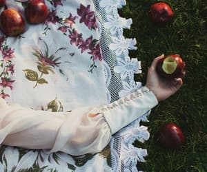 aesthetic, apple, and beauty image