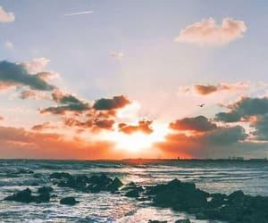 beautiful, inspiracion, and paradise image
