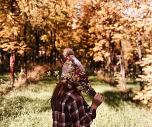 adventure, flannel, and autumn image