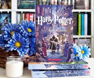 bibliophile, books, and read image