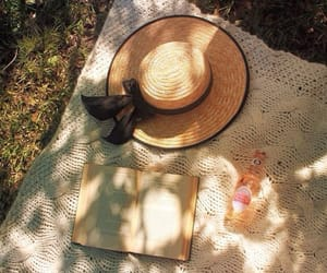 aesthetic, hat, and picnic image