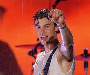funny face, shawn mendes, and gif image