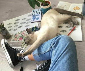 aesthetic, cat, and grunge image