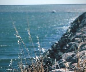 algarve, beach, and nature image