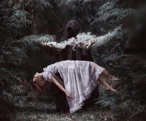 dark, witch, and forest image