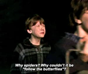 ron weasley, gif, and harry potter image
