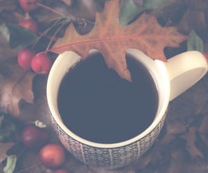 drink and autumn image