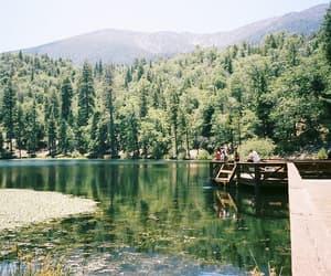 nature, vintage, and lake image