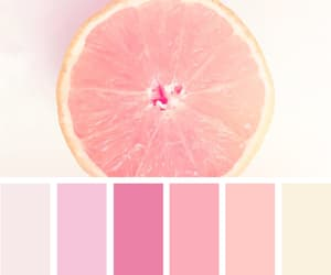 aesthetic, aesthetics, and apricot image