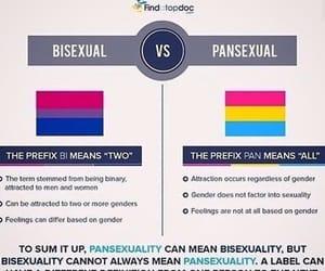 bisexual, lgbtq, and society image