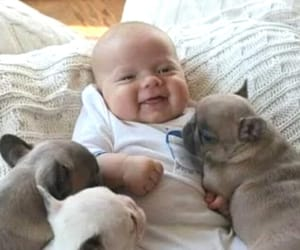 baby and puppies image