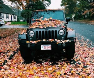 fall, autumn, and jeep image