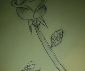 dessin, draw, and roses image
