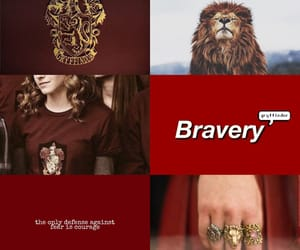 aesthetic, bravery, and gryffindor image