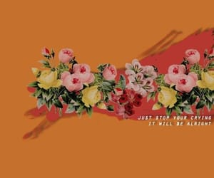orange, flowers, and twitter image