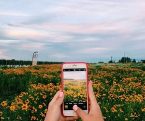 aesthetic, article, and landscape image
