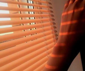 orange, skin, and golden hour image