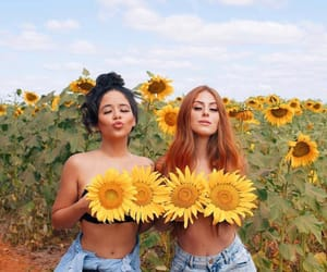 aesthetics, beauty, and florals image