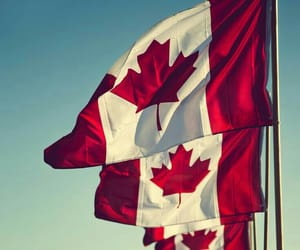 aesthetic, canada, and country image
