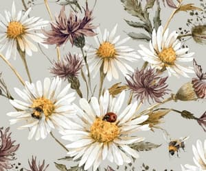 daisy, vintage, and wallpapers image