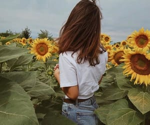 field, girl, and pic image