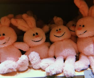 pink, うさぎ, and rabit image