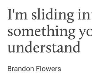 bipolar, brandon, and brandon flowers image