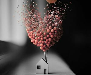 balloons, home, and love image