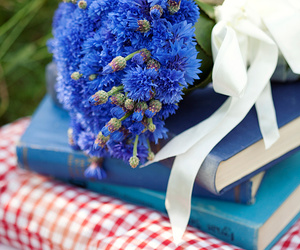 blue, flowers, and cornflowers image