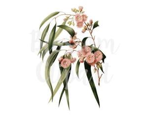 etsy, digital download, and botanical clipart image