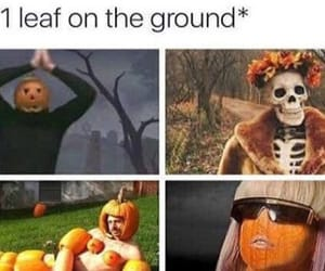 accurate, autumn, and fall image