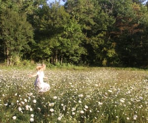 adventure, flowers, and sun image