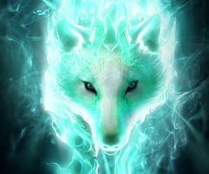wolf, animal, and light image