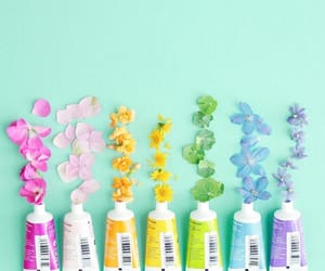 flowers, colors, and paint image