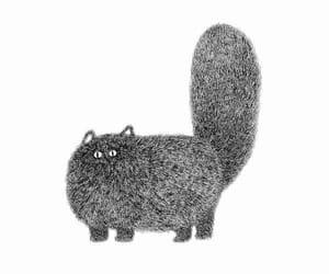 cat, fat cat, and kitties image
